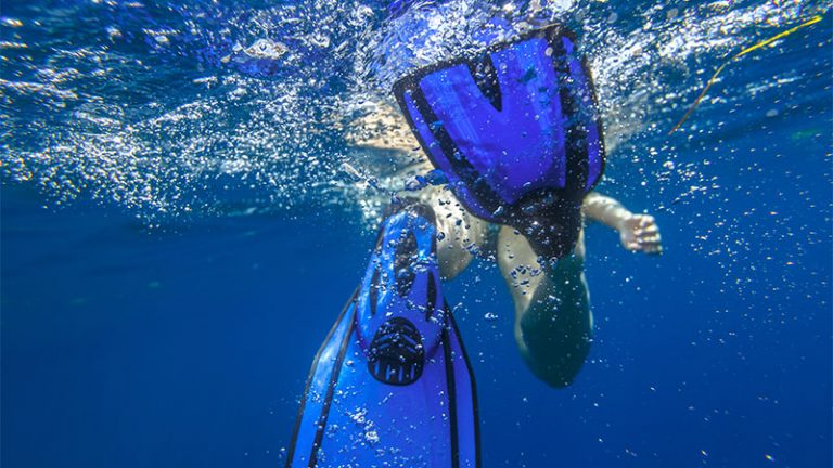 What Are Scuba Diving Fins