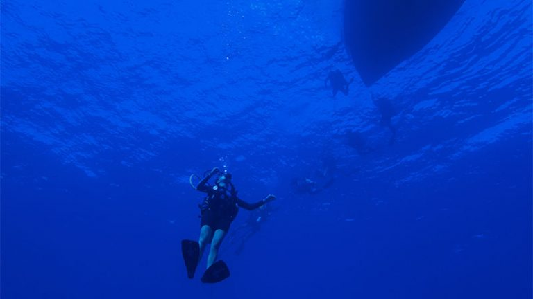 How A Controlled Emergency Ascent Works In Scuba Diving