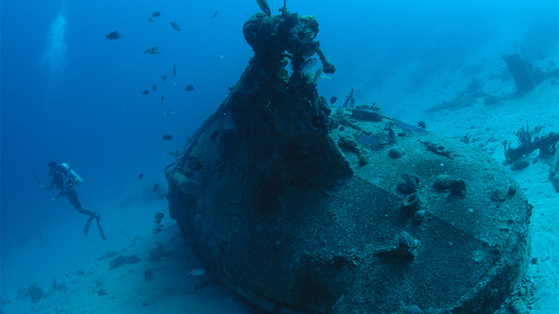 Where Are The Top 10 Cheapest Scuba Diving Destinations