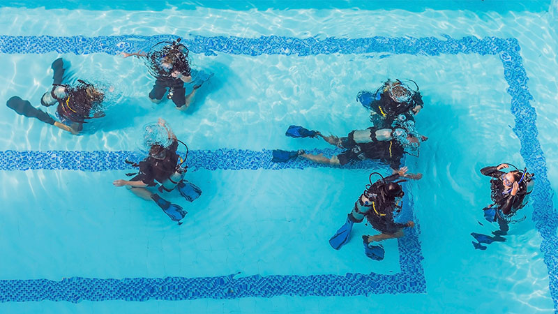 What Is The Difference Between PADI And NAUI Scuba Diving Certification