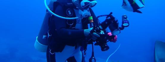 Best Scuba Diving Cameras